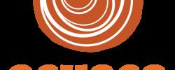 Ochoco-Orange